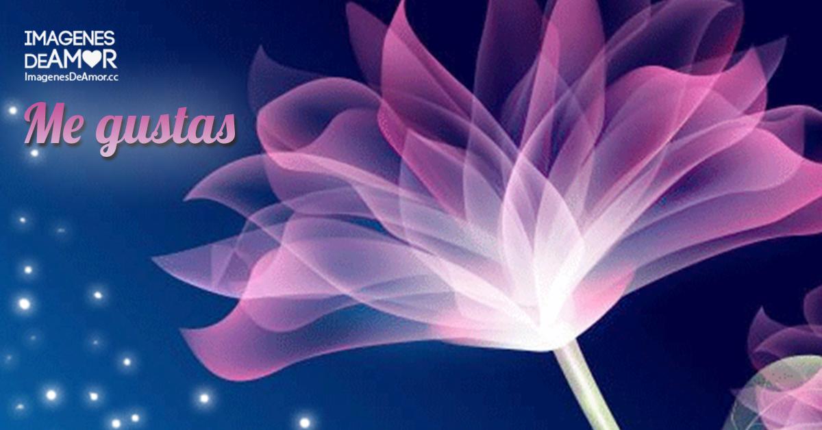 Gifs de flores con movimiento - Gifs de Amor