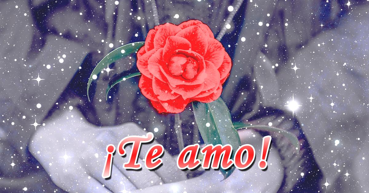 Hermosas Imágenes De Rosas Con Movimientos Gratis